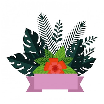 Summer leafs plants and flowers decoration
