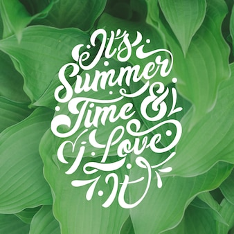 写真付きの夏のレタリング