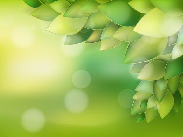 Летние природные фоны для вашего дизайна.