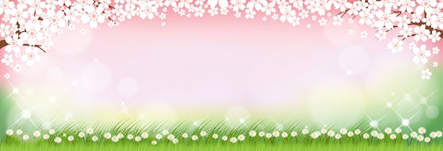 Summer nature background with cute tiny daisy flowers and green grass fields.