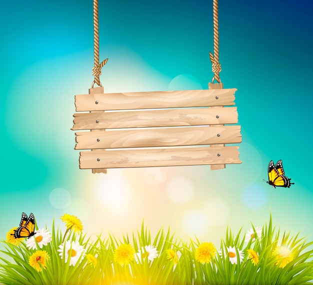 Summer nature background with green grass and wooden sign.