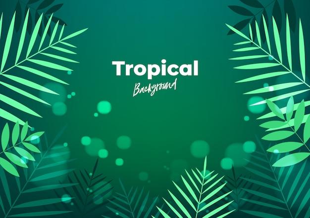 Летняя ночь тропический фон для баннера или флаер с темно-зелеными пальмовыми листьями.