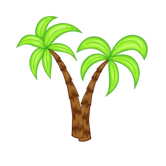 Summer palm tree on a white background.