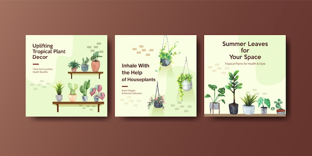 Summer plant and house plants advertise template design