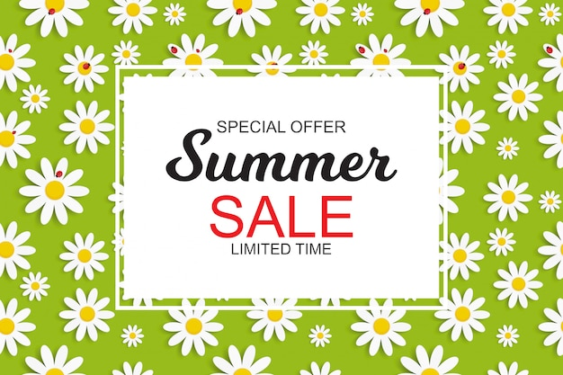 Summer sale banner with daisy flowers