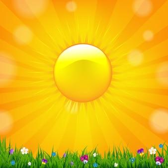 太陽と夏のセールバナー、。
