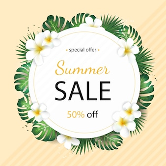 Summer sale banner with tropical palm leaves and plumeria flower