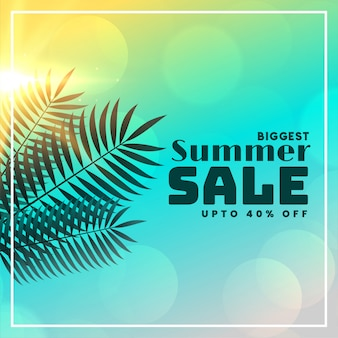 Summer sale beautiful banner with leaves and sunlight