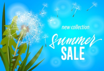 Summer sale, new collection banner with blowing dandelion on sky blue background.
