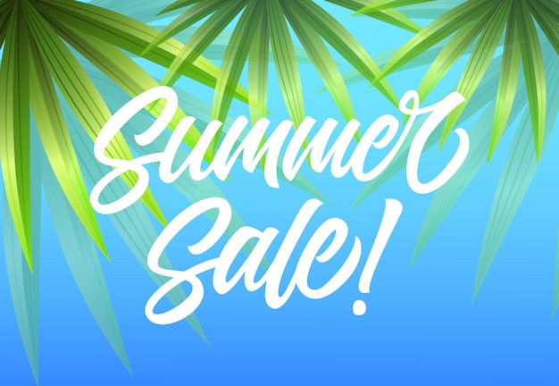 Summer sale seasonal advertising with palm leaves on sky blue background.