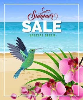 Summer sale special offer lettering with beach and hummingbird.