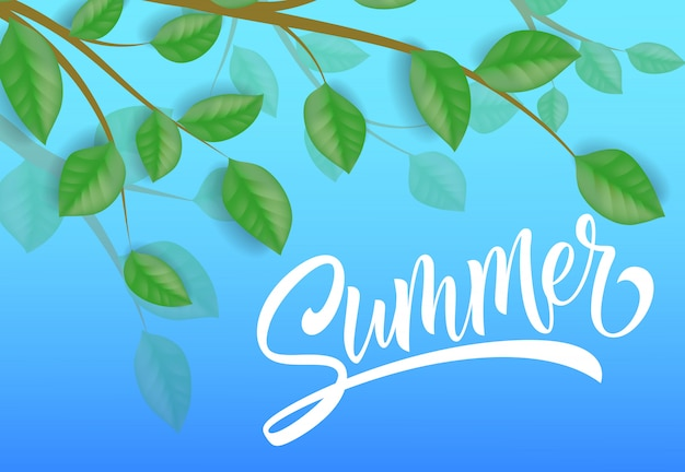 Summer seasonal banner with tree branches and leaves on sky blue background.