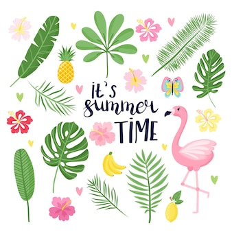 夏のセット、夏の熱帯の季節のイラスト。漫画風の明るいイラスト。グリーティングカード、パーティの招待状、チラシ、ポスターに最適です。