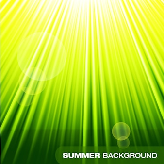 Summer sunburst green background