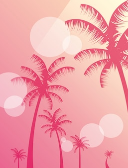 Summer time background with palm trees