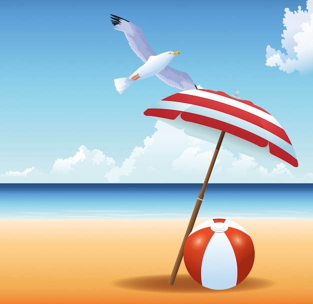 Summer time in beach ball seagull umbrella vacations