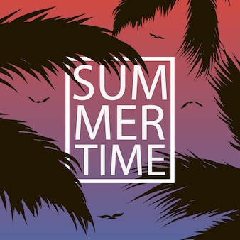 Summer time  card with palm trees leaf gull and frame background for banner poster