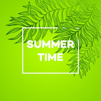 Summer time. illustration of tropical palm leaves