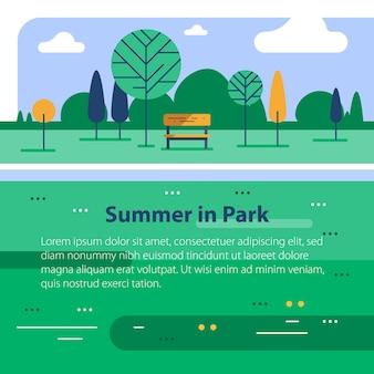 緑豊かな公園の夏時間、川岸の小さなベンチと木、穏やかな天気