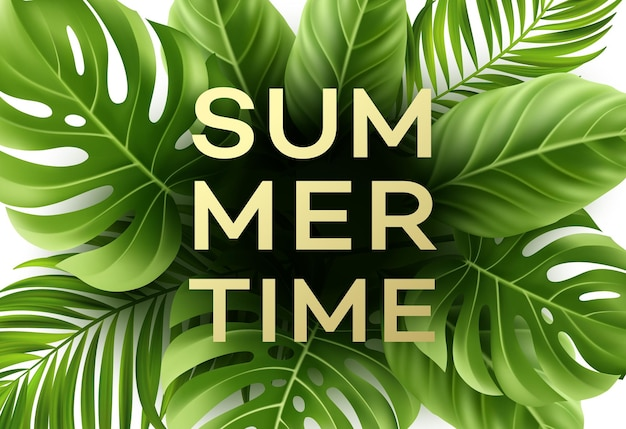 Summer time poster with tropical palm leaf .