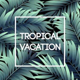 Летний тропический фон из пальмовых листьев. тропические пальмовые листья.