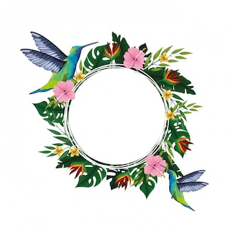 Summer tropical blank card frame