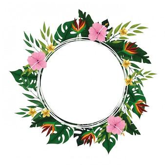 Summer tropical blank  frame
