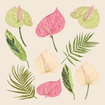 夏の熱帯のエキゾチックな緑のヤシの葉とアンスリウムの花