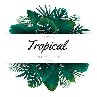 Summer tropical leaves template background.