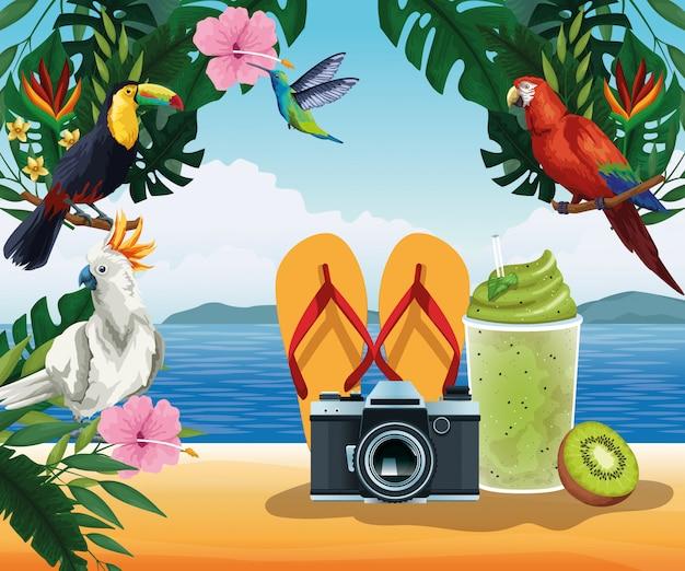 夏休みとビーチの漫画スタイル