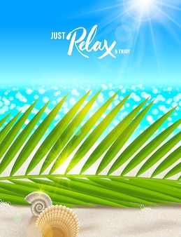 Summer vacation illustration palm tree branches and shells on the beach sand