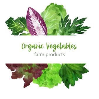 Летние овощи баннер рисованной акварельные иллюстрации Premium векторы