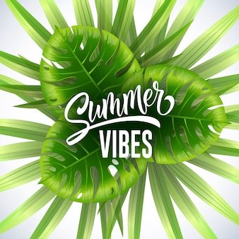 Summer vibes seasonal banner with tropical leaves on white background.
