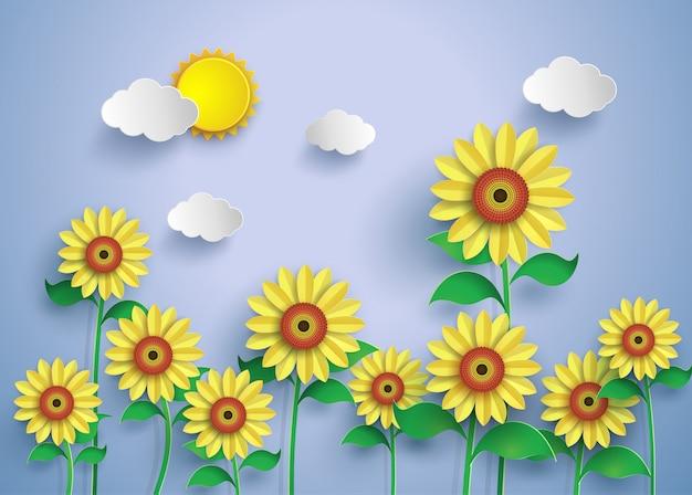 Солнце цветочное поле