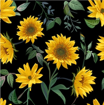 Sun flower illustration seamless pattern