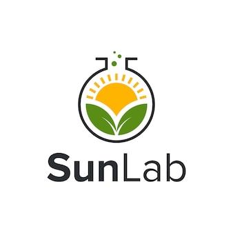 Солнце с листьями природа простой современный дизайн логотипа вектор