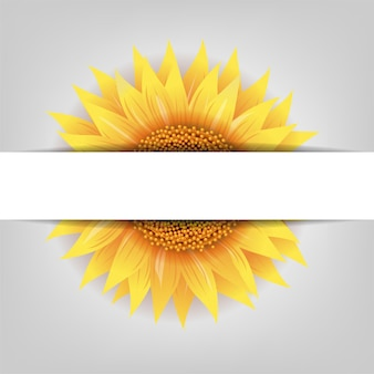 グラデーションメッシュの紙のバナーとひまわりの花