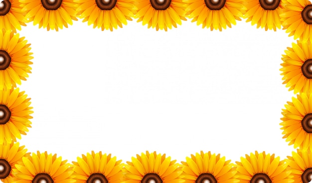 A sunflower frame