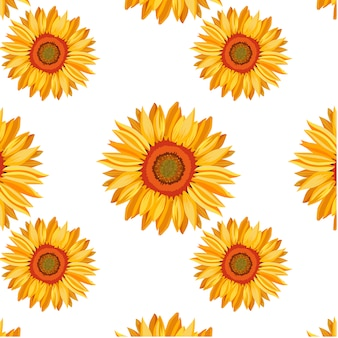 Sunflower pattern background