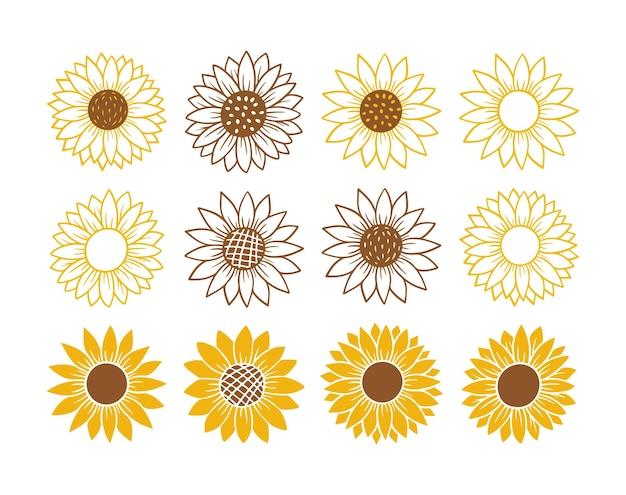 Набор простых иконок подсолнечника. цветочный силуэт векторные иллюстрации. коллекция графических логотипов подсолнечника, рисованной значок для упаковки, декора. рамка из лепестков, черный силуэт на белом фоне.