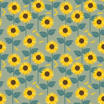 Sunflowers field  seamless pattern.