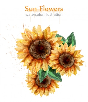 Sunflowers watercolor floral decor
