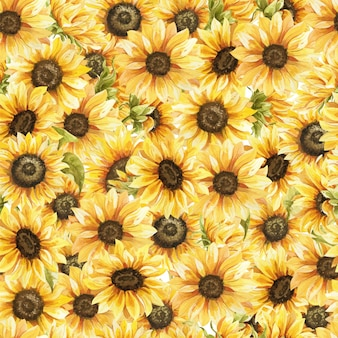 Sunflowers watercolor seamless pattern hand drawn flowers