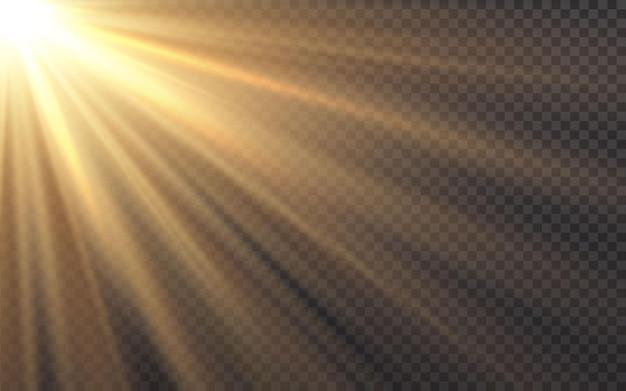 日光特殊レンズフラッシュライト効果ぼかし光の効果。