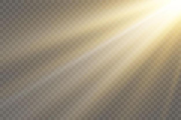 투명 배경에 햇빛 특수 렌즈