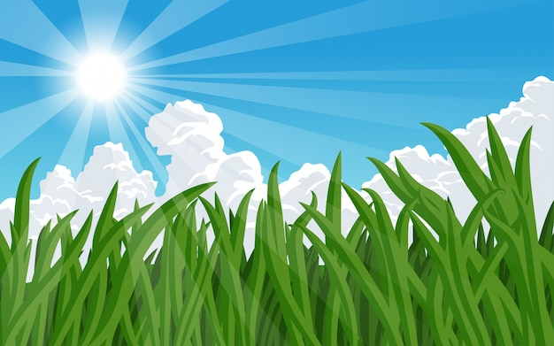 Sunny day illustration with grass and clouds
