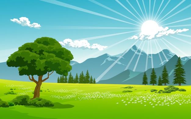 田舎の晴れた日