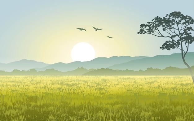 Восход солнца в сельской местности с лугами и холмами