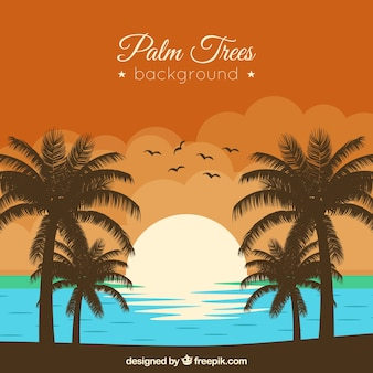 Sunset background on the beach with palm trees