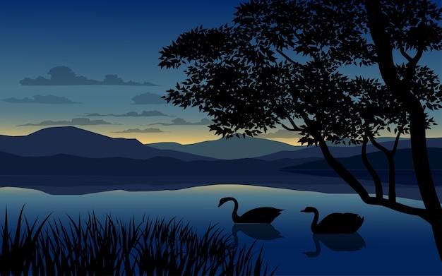 Закат в озере с лебедями